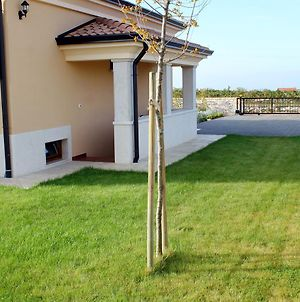 Family Friendly House With A Swimming Pool Kanfanar, Central Istria - Sredisnja Istra - 7330 photos Exterior