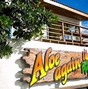 Aloe Again photos Exterior