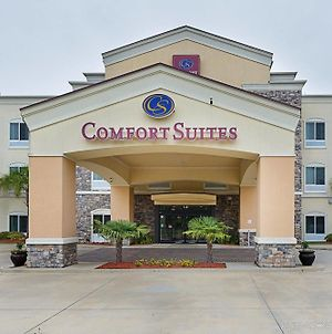 Comfort Suites Fort Polk photos Exterior