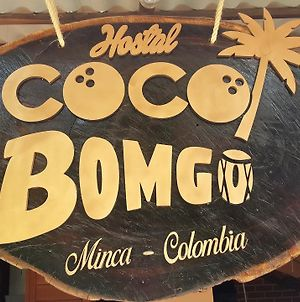 Hostal Coco Bomgo photos Exterior