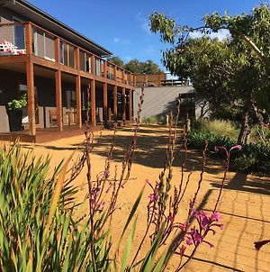 The Anglesea Beach House Adventure Retreat photos Exterior