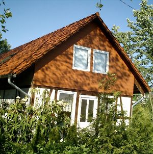 Charming Bungalow In Borgerende-Rethwisch With Sauna photos Exterior