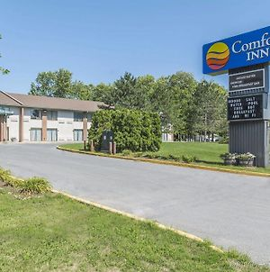 Comfort Inn Cornwall photos Exterior
