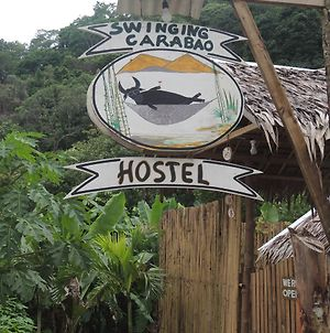Swinging Carabao Hostel photos Exterior