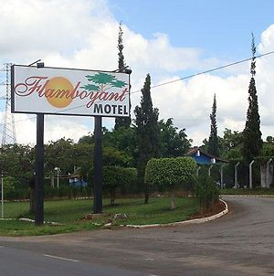 Flamboyant Motel Adults Only photos Exterior