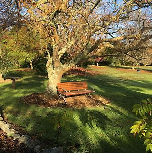 Kerikeri Garden Homestead photos Exterior