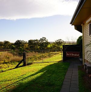 Muswellbrook Northside B&B photos Exterior