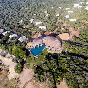 Wild Coast Tented Lodge All Inclusive - Level 1 Certified photos Exterior