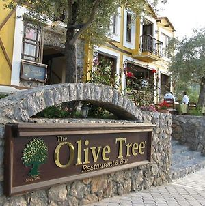 Olive Tree Studio (Adults Only) photos Exterior