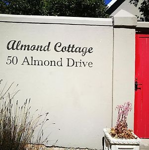 Almond Cottage Bed & Breakfast photos Exterior