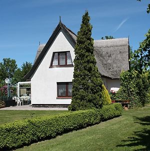 Lovely Holiday Home In Pepelow Near Baltic Sea photos Exterior