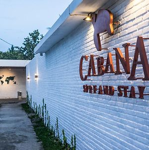 Cabana Surf And Stay photos Exterior