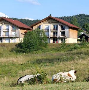 Apartment With One Bedroom In Xonrupt Longemer With Wonderful Mountain View 10 Km From The Slopes photos Exterior