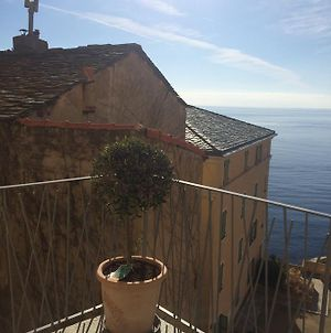 Apartment With 2 Bedrooms In Bastia With Wonderful Sea View Furnished Terrace And Wifi 3 Km From The Beach photos Exterior