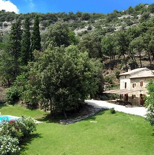 Vintage Mansion In Bollene With Private Pool photos Exterior