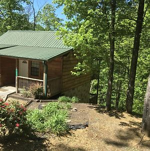 Bear Tracks Bear Oaks Cabin In The Woods Between Pigeon Forge Gatlinburg photos Exterior