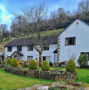 Neuadd Wen Guest House photos Exterior