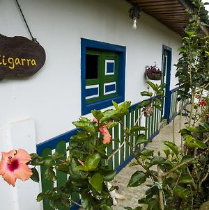 La Cigarra Cine Y Cafe photos Exterior