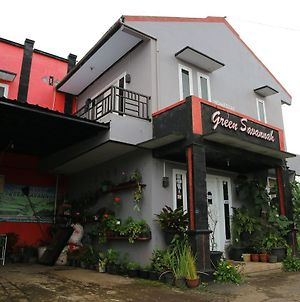 Green Savanah Homestay photos Exterior