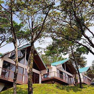 Green Forest Rustic Houses photos Exterior