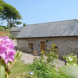 Authentic Holiday Home In Ilfracombe With Garden photos Exterior