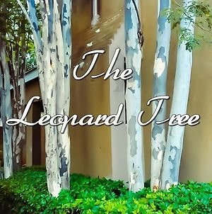 The Leopard Tree photos Exterior