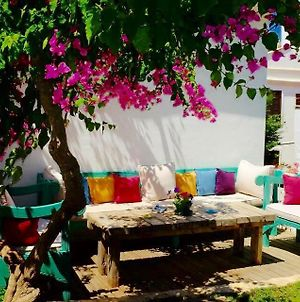The White House Kalkan photos Exterior