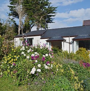 Haulfryn Cottage photos Exterior