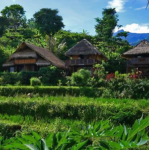 Rinjani Mountain Garden photos Exterior