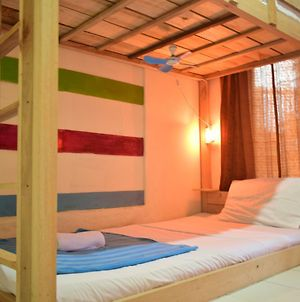 Dodo Backpacker Hostel Borobudur photos Exterior