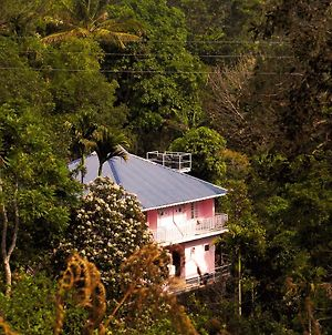Drizzle Valley Cottage photos Exterior