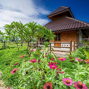 Panya Garden Resort photos Room