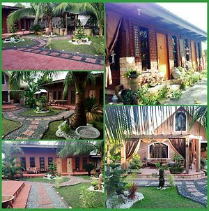 Bognot Lodge : Alvin Bognot Mt Pinatubo Guesthouse And Tours photos Exterior