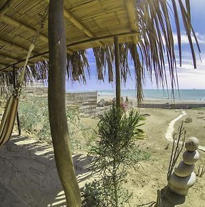 Lobitos Surf House photos Exterior