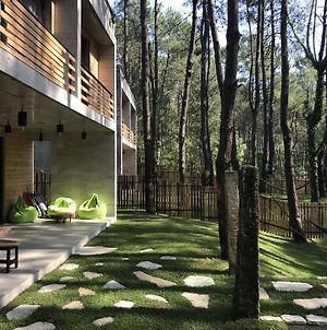 Kaprovani Pine Grove Beach House photos Exterior