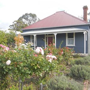 Yarram Cottage: Art And Accommodation photos Exterior