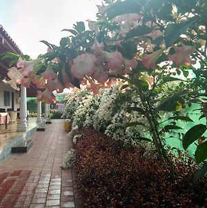Bougainvillea Homestay photos Exterior