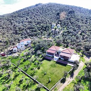 Gera'S Olive Grove photos Exterior