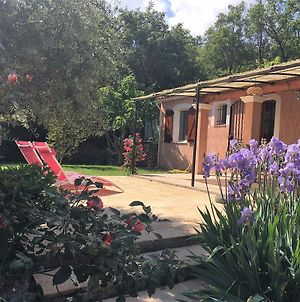Holiday Home In La Celle With Swimming Pool Vr photos Exterior