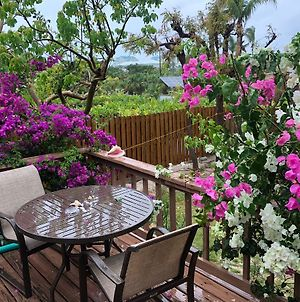 Affordable Adorable Cottage In Grace Bay With Pool photos Exterior