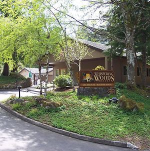 Whispering Woods Resort photos Exterior