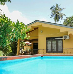 Green View Home Stay & Spa photos Exterior