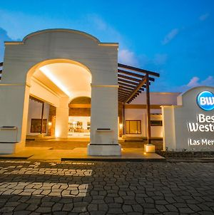 Best Western Las Mercedes Airport photos Exterior