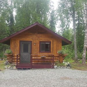 Talkeetna Fireweed Cabins photos Exterior