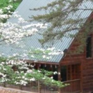 3 Bedroom Cabin -Fire Pit No Mtn Roads Close To Parkway photos Exterior
