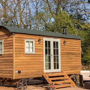 Luxury Shepherds Hut photos Exterior