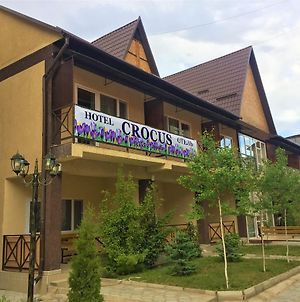 Hotel Crocus photos Exterior