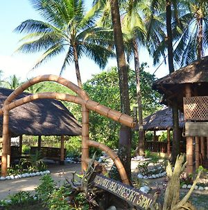 Big Bamboo Beach Resort Sipalay photos Exterior