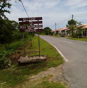 Mulu Backpackers Homestay photos Exterior