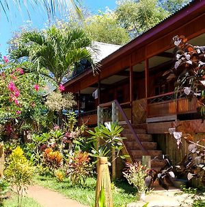 Panorama Backpackers photos Exterior